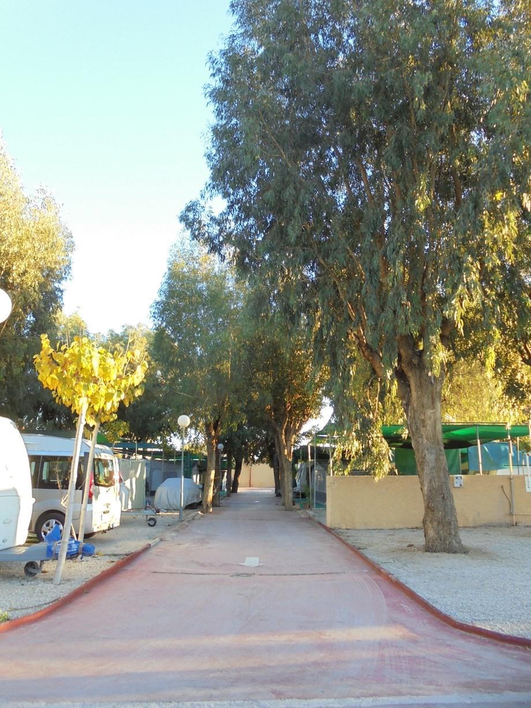 Camping el jardin wohnmobilstellplatz in spanien for Camping el jardin san juan